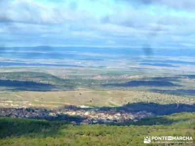 Acebos Montes Carpetanos; agencias de senderismo en madrid